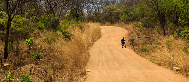 Discover the birthplace of the walking safari