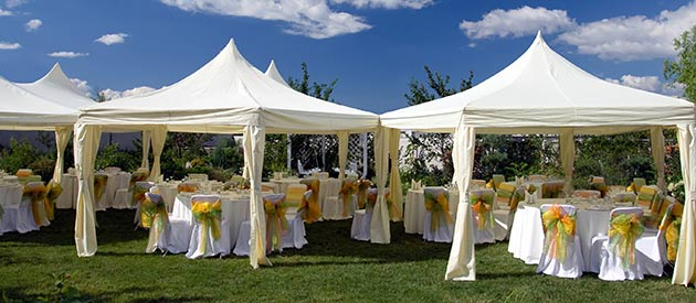 Wedding decoration zambia images wedding dress for Hotel decor suppliers