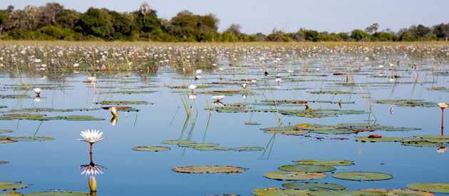 Samfya is situated in the Luapula Province of Zambia.